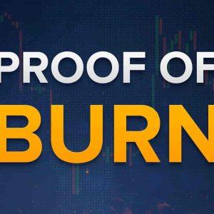 Proof of Burn (PoB) là gì?